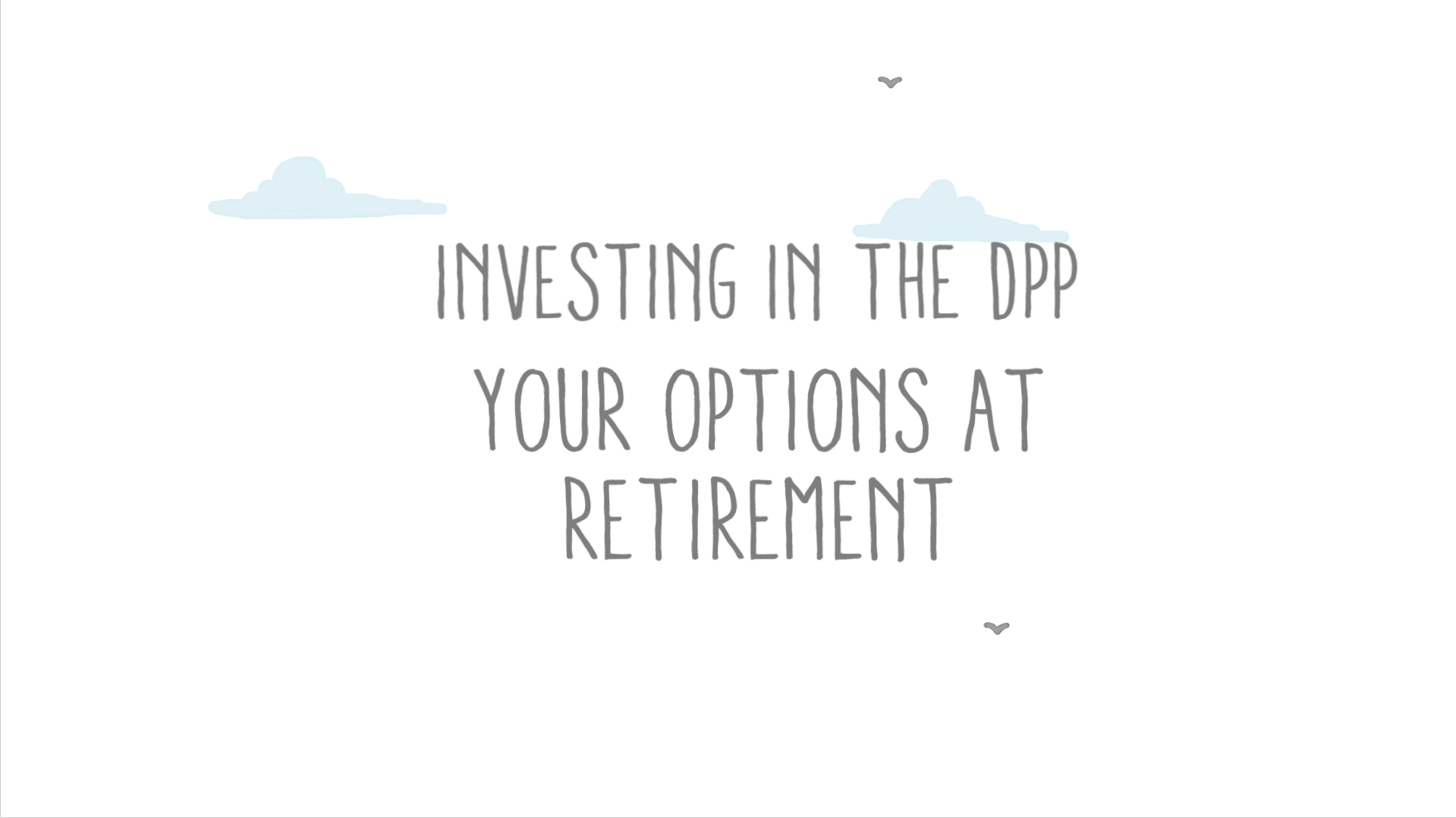 Investing in the DPP your options at retirement